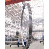 Psl Replacement Slewing Ring Manufacturer for Crane Accessories